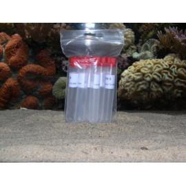 Solution PH 9.00 (10 flacons unidoses)