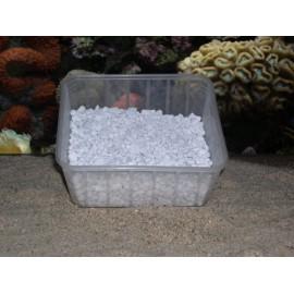 Tridacna/Mag (dolomite) kilo