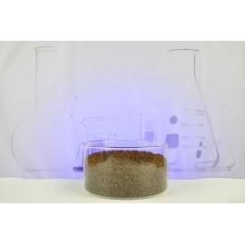Tridacna/Phos litre